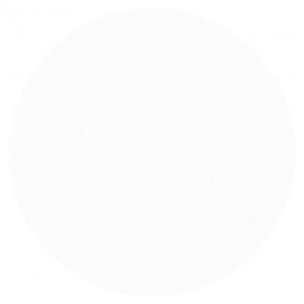 #049 Salon Success 15ml - ASTONISHING GELOSOPHY - gel lak na nehty