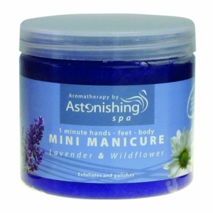 Mini Manicure Lavender & Wildflower 454 g (3330311006) na errow.cz